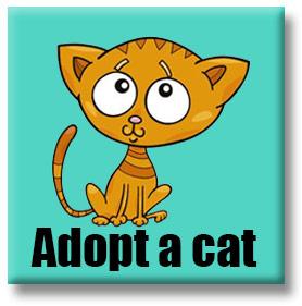 adoptacat