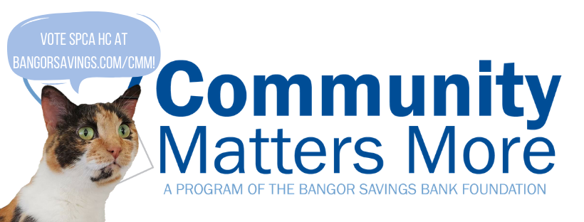 Bangor Savings Bank: Community Matters More