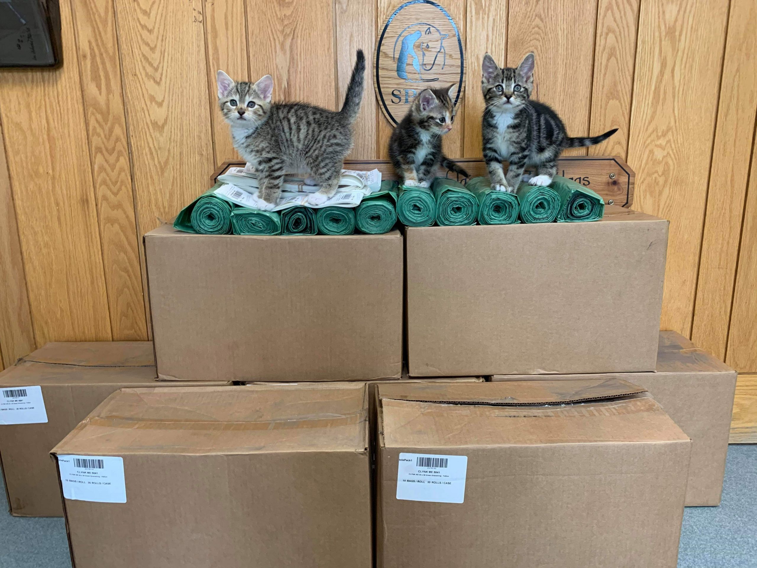 Save Our Shelter Bottle Drive