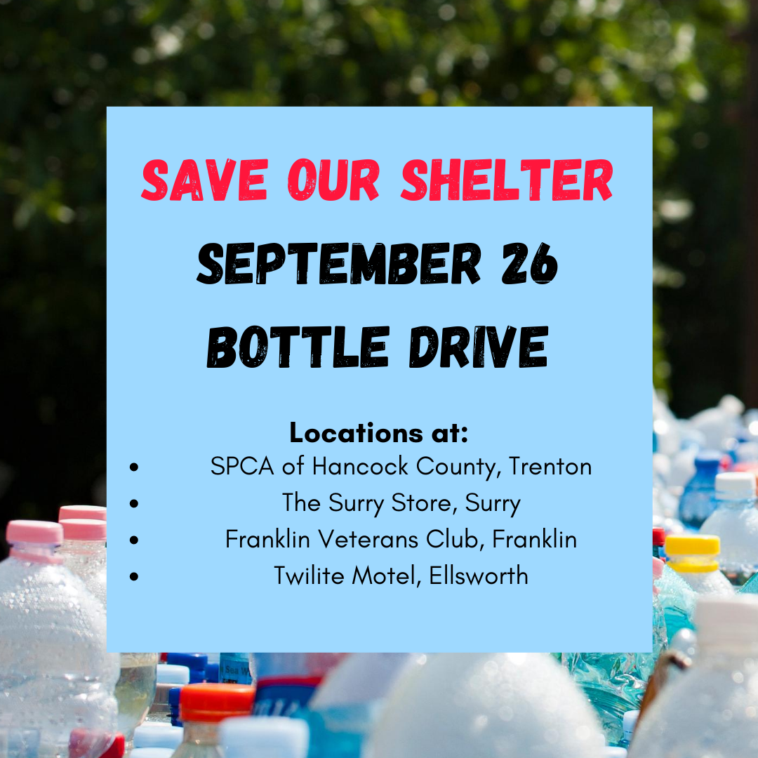 Save Our Shelter Bottle Drive September 2020